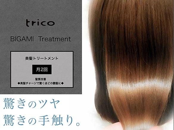 【月定額】髪質改善 美髪トリートメント 月2回
